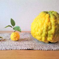 柚子の皮の使い方と保存方法