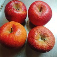 りんごの大量消費を試みました!簡単で保存も利くこの方法がおすすめ!