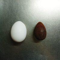 貧血の鉄分補給に「鉄玉子」を使ってみました!使い方と保管方法