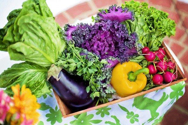 栄養バランスを考えて選んだ栄養価の高い野菜いろいろ